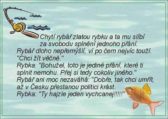 chyta rybar zlatou rybku