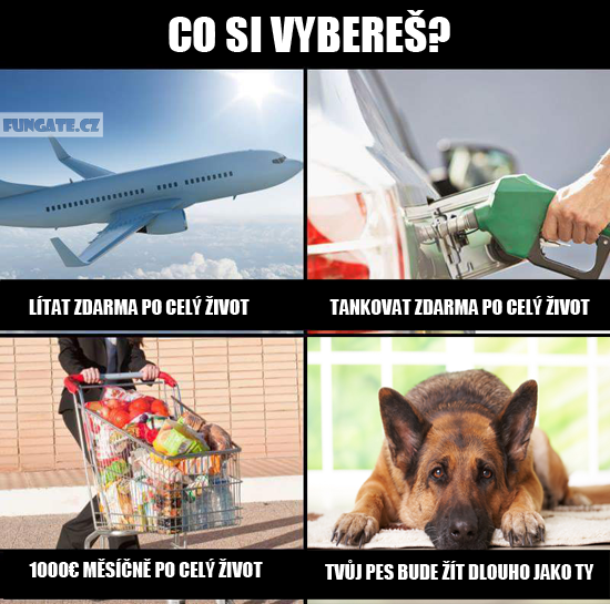 Co si vybereš?
