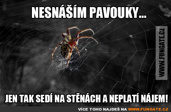 Nesnáším pavouky...
