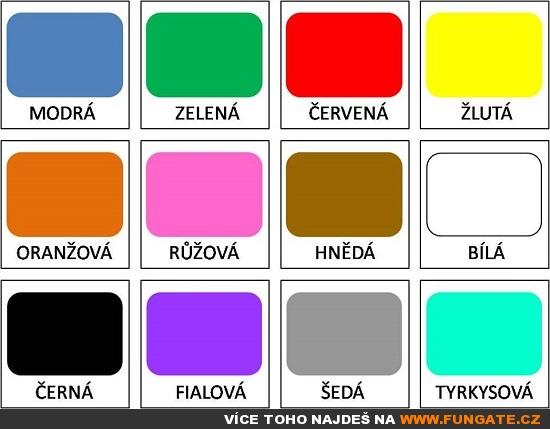 jaká je tvoje oblíbená barva