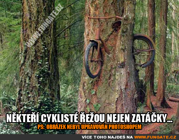 nekteri-cykliste