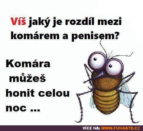 Víš jaký je rozdíl mezi komárem a penisem?