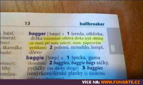 Anglicko-český slovník - bagger