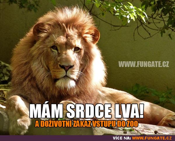 Mám srdce lva!