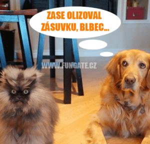 Černoch olizuje kočička